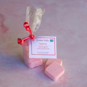 Soup of Success Peppermint Shower Melts
