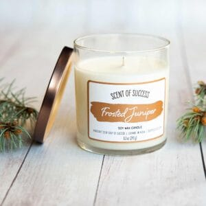 Open Soup of Success Frosted Juniper Soy Candle