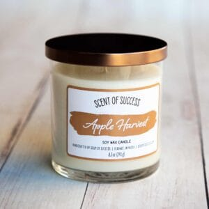 Soup of Success Apple Harvest Soy Candle